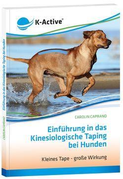 Einführung in das Kinesiologische Taping bei Hunden von Caprano,  Carolin
