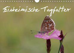 Einheimische Tagfalter (Wandkalender 2019 DIN A4 quer) von Sprenger,  Bernd