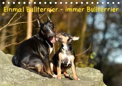 Einmal Bullterrier – immer Bullterrier (Tischkalender 2021 DIN A5 quer) von Janetzek,  Yvonne