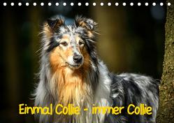 Einmal Collie – immer Collie (Tischkalender 2019 DIN A5 quer) von Janetzek,  Yvonne