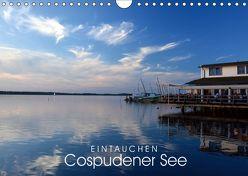 EINTAUCHEN – Cospudener See (Wandkalender 2019 DIN A4 quer)
