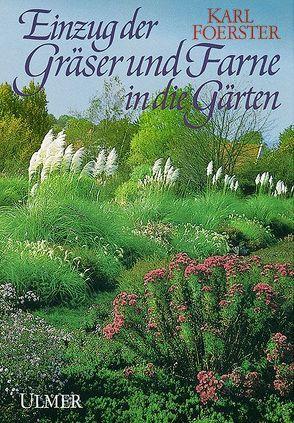 Einzug der Gräser und Farne in die Gärten von Foerster,  Karl, Röllich,  Bernhard