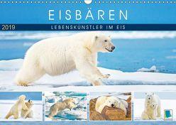 Eisbären: Lebenskünstler im Eis (Wandkalender 2019 DIN A3 quer)