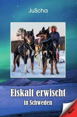 Eiskalt erwischt in Schweden von JuScha