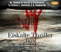 Eiskalte Thriller von Etzold,  Veit, Holbe,  Daniel, Jackson,  Lisa, Poznanski,  Ursula, Tremayne,  S. K., Tsokos,  Michael