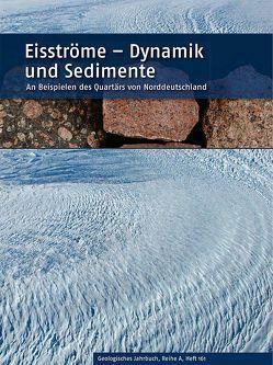 Eisströme – Dynamik und Sedimente von Meyer,  Klaus-Dieter, Roland,  Norbert W.