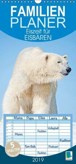 Eiszeit für Eisbären (Wandkalender 2019 , 21 cm x 45 cm, hoch) von CALVENDO