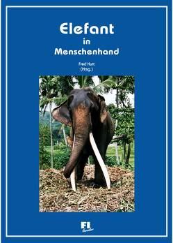 Elefant in Menschenhand von Kurt,  Fred, Pieler,  Eva, Weihs,  Wolfgang