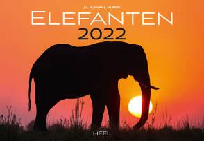 Elefanten 2022 von Hubert,  M.-L., Klein,  J. L.