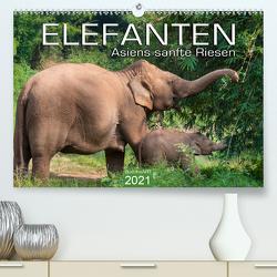 ELEFANTEN Asiens sanfte Riesen (Premium, hochwertiger DIN A2 Wandkalender 2021, Kunstdruck in Hochglanz) von BuddhaART