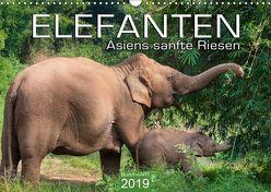 ELEFANTEN Asiens sanfte Riesen (Wandkalender 2019 DIN A3 quer)