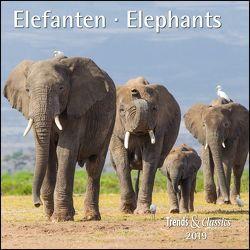 Elefanten Elephants 2019 – Broschürenkalender – Wandkalender – mit herausnehmbarem Poster – Format 30 x 30 cm