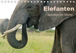 Elefanten – Faszination der Wildnis (Tischkalender 2019 DIN A5 quer) von Haase,  Nadine