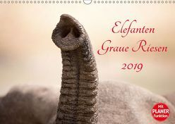 Elefanten – Graue Riesen (Wandkalender 2019 DIN A3 quer) von und Holger Karius,  Kirsten