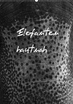 Elefanten hautnah (Wandkalender 2019 DIN A2 hoch) von Hopfmann,  Antje