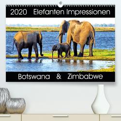 Elefanten Impressionen (Premium, hochwertiger DIN A2 Wandkalender 2020, Kunstdruck in Hochglanz) von Fraatz,  Barbara
