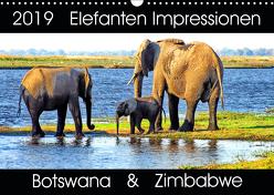 Elefanten Impressionen (Wandkalender 2019 DIN A3 quer) von Fraatz,  Barbara