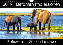 Elefanten Impressionen (Wandkalender 2019 DIN A4 quer) von Fraatz,  Barbara