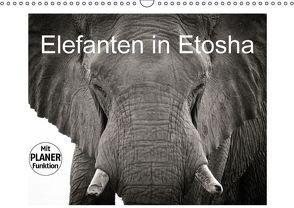 Elefanten in Etosha (Wandkalender 2016 DIN A3 quer) von van der Wiel,  Irma