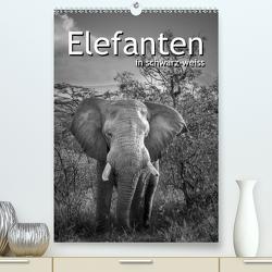 Elefanten in schwarz-weiss (Premium, hochwertiger DIN A2 Wandkalender 2021, Kunstdruck in Hochglanz) von Styppa,  Robert