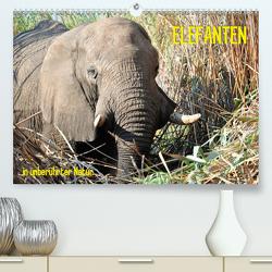ELEFANTEN IN UNBERÜHRTER NATUR (Premium, hochwertiger DIN A2 Wandkalender 2021, Kunstdruck in Hochglanz) von Goldinger,  Roman