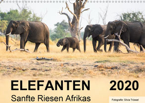 Elefanten – Sanfte Riesen Afrikas (Wandkalender 2020 DIN A3 quer) von Trüssel,  Silvia