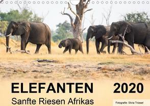Elefanten – Sanfte Riesen Afrikas (Wandkalender 2020 DIN A4 quer) von Trüssel,  Silvia