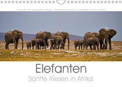 Elefanten – Sanfte Riesen in Afrika (Wandkalender 2019 DIN A4 quer) von Tewes,  Rainer