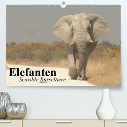 Elefanten. Sensible Rüsseltiere (Premium, hochwertiger DIN A2 Wandkalender 2021, Kunstdruck in Hochglanz) von Stanzer,  Elisabeth