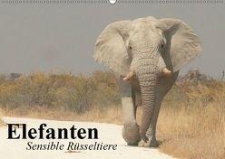 Elefanten. Sensible Rüsseltiere (Wandkalender 2019 DIN A2 quer) von Stanzer,  Elisabeth