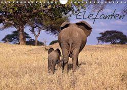Elefanten (Wandkalender 2019 DIN A4 quer) von Voss,  Michael