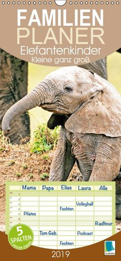 Elefantenkinder: Kleine ganz groß (Wandkalender 2019 , 21 cm x 45 cm, hoch) von CALVENDO