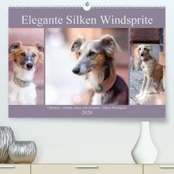 Elegante Silken Windsprite (Premium, hochwertiger DIN A2 Wandkalender 2020, Kunstdruck in Hochglanz) von Verena Scholze,  Fotodesign