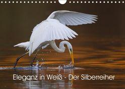 Eleganz in Weiß – Der Silberreiher (Wandkalender 2019 DIN A4 quer) von Martin,  Wilfried