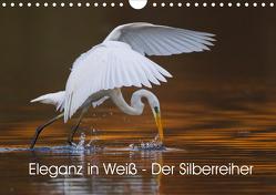 Eleganz in Weiß – Der Silberreiher (Wandkalender 2021 DIN A4 quer) von Martin,  Wilfried
