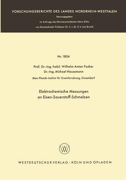Elektrochemische Messungen an Eisen-Sauerstoff-Schmelzen von Fischer,  Wilhelm Anton