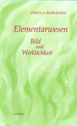Elementarwesen von Bielser,  Anina, Burkhard,  Ursula, Streit,  Jakob