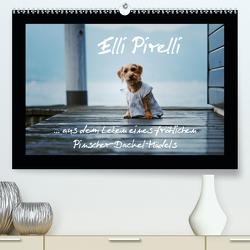 Elli Pirelli… aus dem Leben eines fröhlichen Pinscher-Dackel-Mädels (Premium, hochwertiger DIN A2 Wandkalender 2020, Kunstdruck in Hochglanz) von Köntopp,  Kathrin