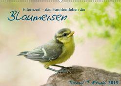 Elternzeit – das Familienleben der Blaumeisen (Wandkalender 2019 DIN A2 quer) von T. Frank,  Roland