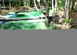 Emerald Pool, Provinz Krabi – Thailand (Wandkalender 2019 DIN A3 quer) von Weiss,  Michael