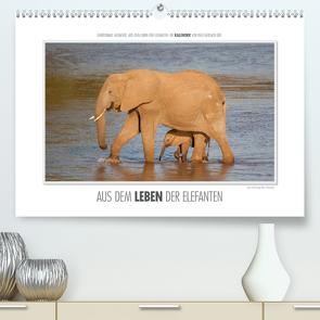 Emotionale Momente: Aus dem Leben der Elefanten. / CH-Version (Premium, hochwertiger DIN A2 Wandkalender 2020, Kunstdruck in Hochglanz) von Gerlach GDT,  Ingo