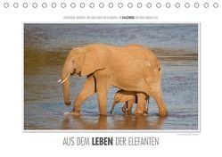 Emotionale Momente: Aus dem Leben der Elefanten. (Tischkalender 2018 DIN A5 quer) von Gerlach GDT,  Ingo
