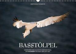 Emotionale Momente: Basstölpel / CH-Version (Wandkalender 2019 DIN A3 quer) von Gerlach GDT,  Ingo