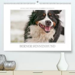 Emotionale Momente: Berner Sennenhund. (Premium, hochwertiger DIN A2 Wandkalender 2021, Kunstdruck in Hochglanz) von Gerlach GDT,  Ingo