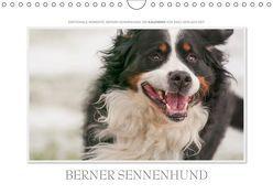 Emotionale Momente: Berner Sennenhund. (Wandkalender 2019 DIN A4 quer) von Gerlach GDT,  Ingo