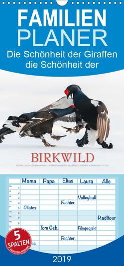 Emotionale Momente: Birkwild – Familienplaner hoch (Wandkalender 2019 , 21 cm x 45 cm, hoch) von Gerlach GDT,  Ingo