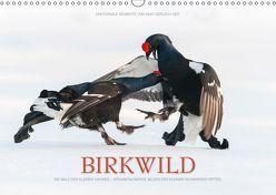 Emotionale Momente: Birkwild (Wandkalender 2019 DIN A3 quer) von Gerlach GDT,  Ingo