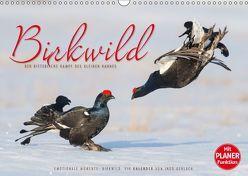 Emotionale Momente: Birkwild (Wandkalender 2019 DIN A3 quer) von Gerlach,  Ingo