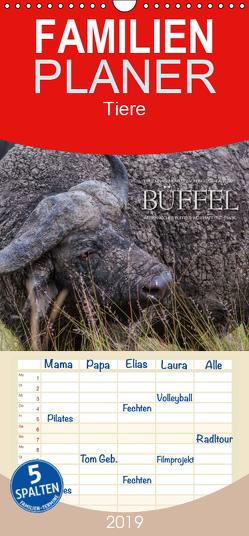 Emotionale Momente: Büffel – Familienplaner hoch (Wandkalender 2019 , 21 cm x 45 cm, hoch) von Gerlach GDT,  Ingo