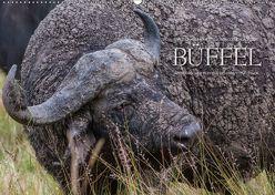 Emotionale Momente: Büffel (Wandkalender 2018 DIN A2 quer) von Gerlach GDT,  Ingo